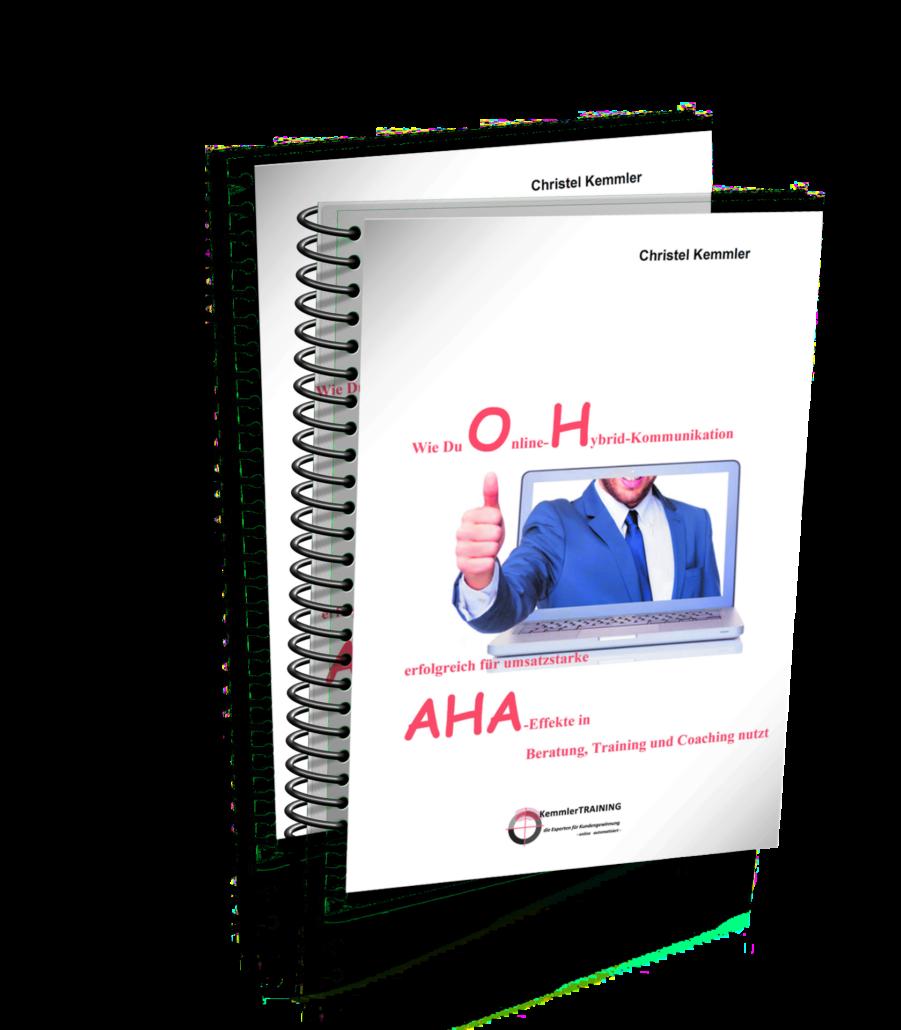 e-book Online-Hybrid-Kommunikation